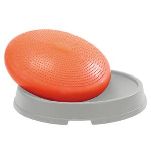 disque dome (1)